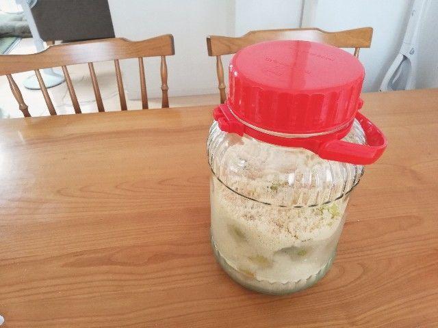 冷凍梅と三温糖のシロップ