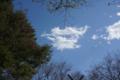 ソラに出てた雲