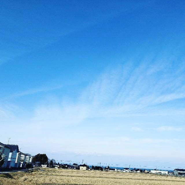 f:id:soranosuke0203:20190207205201j:image