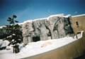 寝ているシロクマ@旭山動物園(フィルムsolaris100)