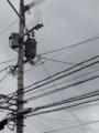 [空][電線][曇り]電線と曇り空。モノクロ。2013/7/3