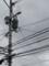 電線と曇り空。モノクロ。2013/7/3