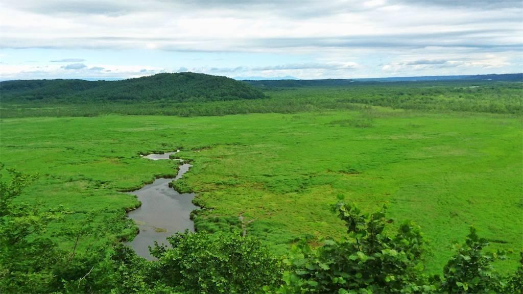コッタ展望台からの湿原