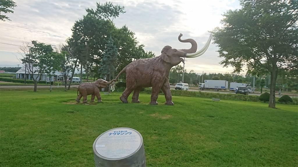 ナウマン象