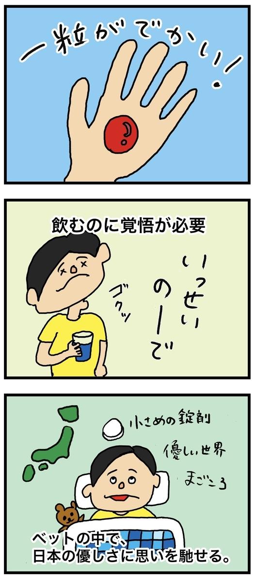 錠剤のデカさと日本のお薬