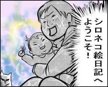 シロネコ絵日記
