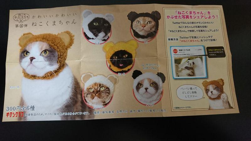 パンダ 被り物 猫
