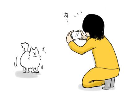 絵日記 4コマ 猫