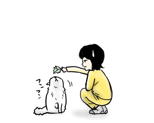 「絵日記」猫に葉を置く