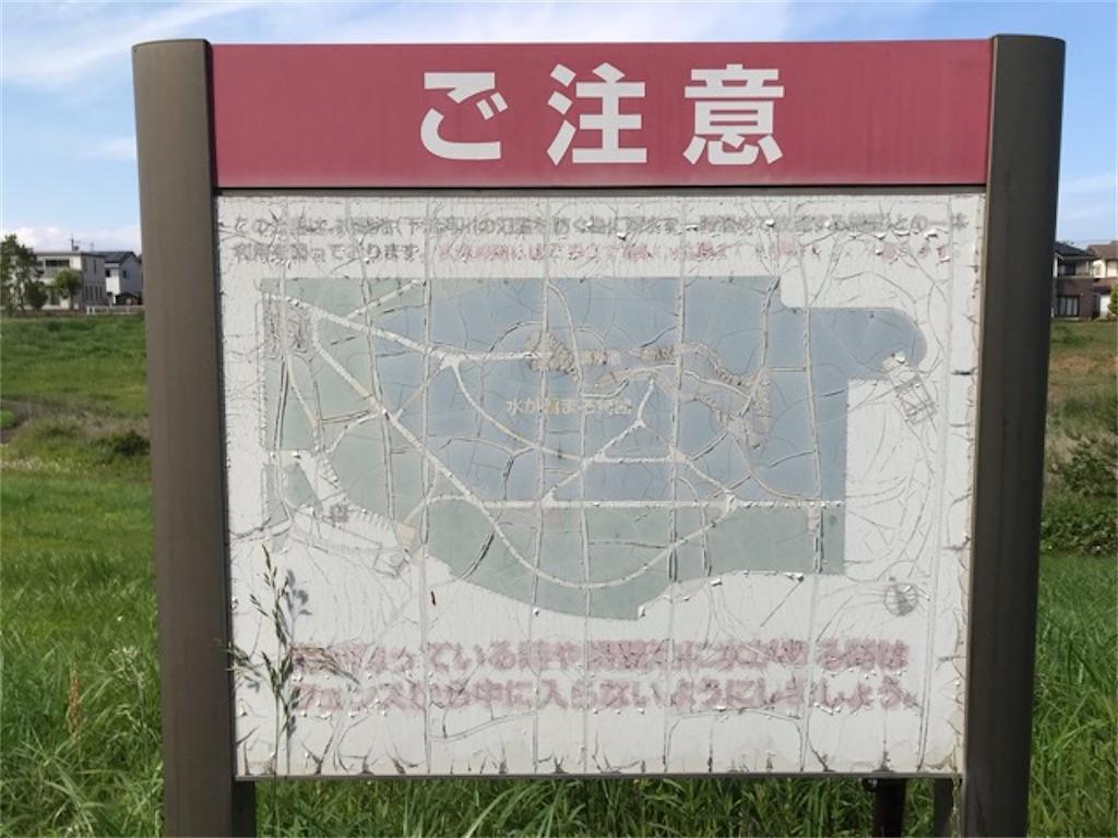 f:id:soshinataoru:20210526171116j:plain