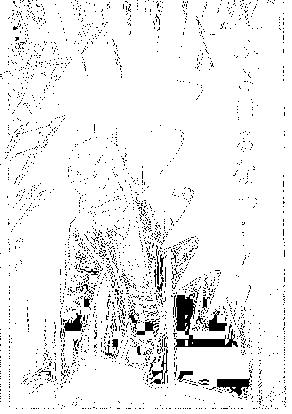 f:id:sosiga:20170204194218p:plain