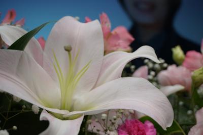 f:id:sougi-yuguchi:20210609100208j:plain