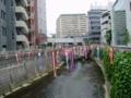 20160502・神田川高田馬場界隈・1
