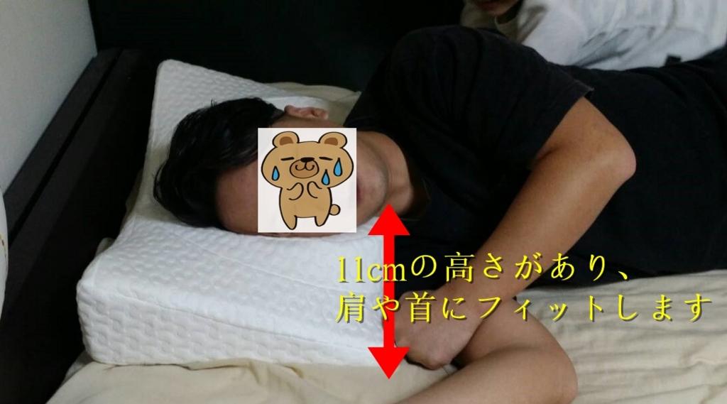 f:id:sounosuke040401:20170430000514j:plain