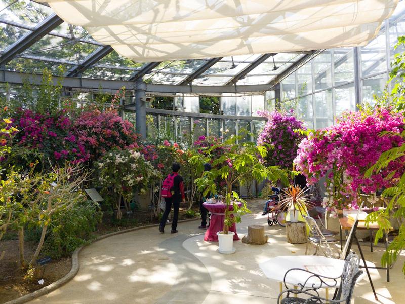 日比谷花壇大船フラワーセンターのグリーンハウス