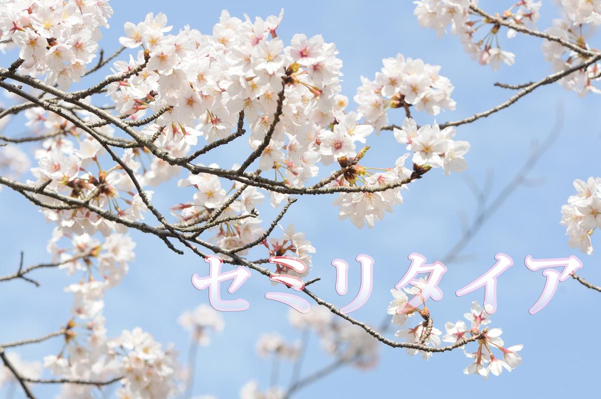 f:id:sousei-syousetu:20190831163443j:plain