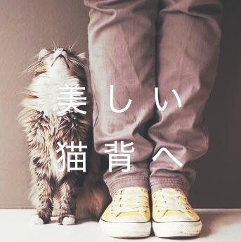 f:id:sousuke1202:20170306154059j:plain
