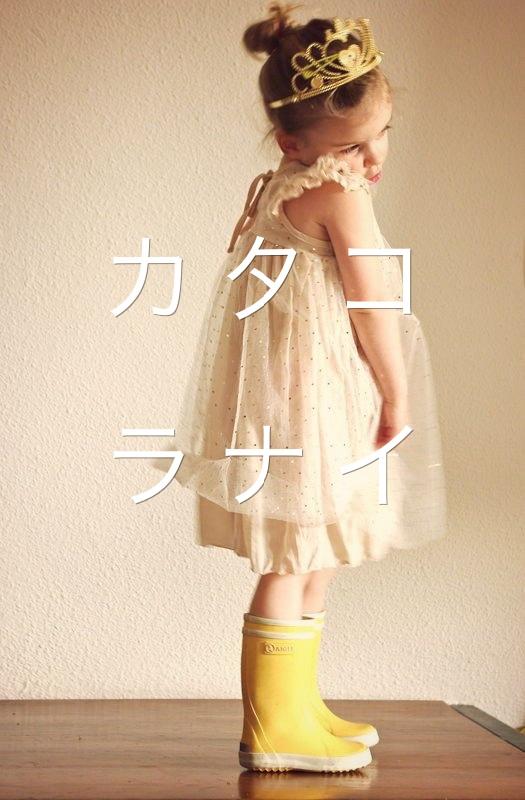 f:id:sousuke1202:20170319203710j:plain