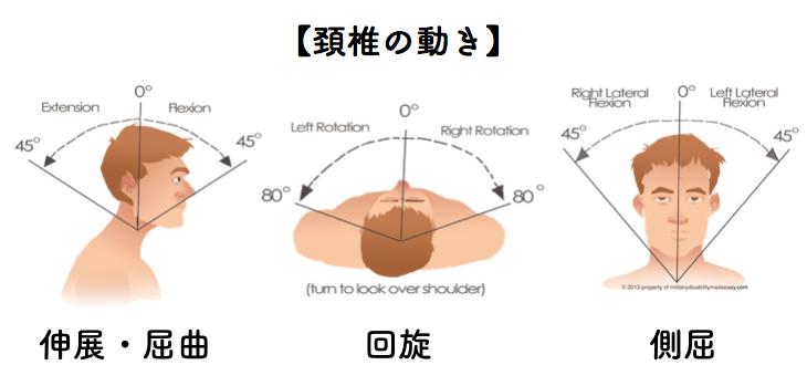 f:id:sousuke1202:20170803161125p:plain