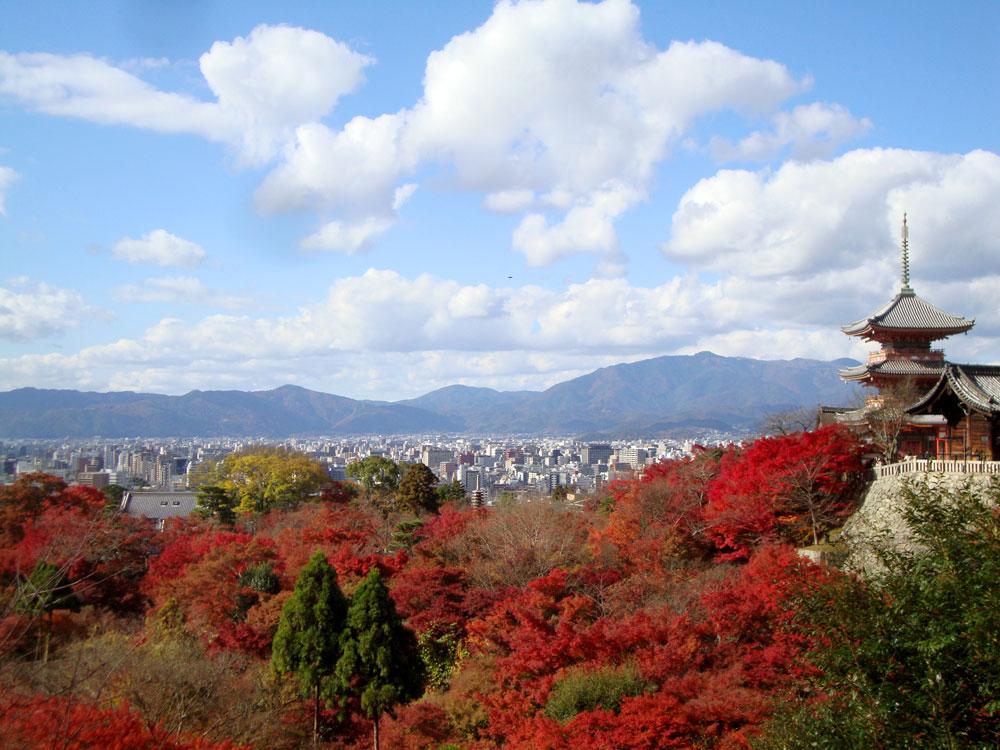 f:id:soutokuaoyama:20200626155717p:plain
