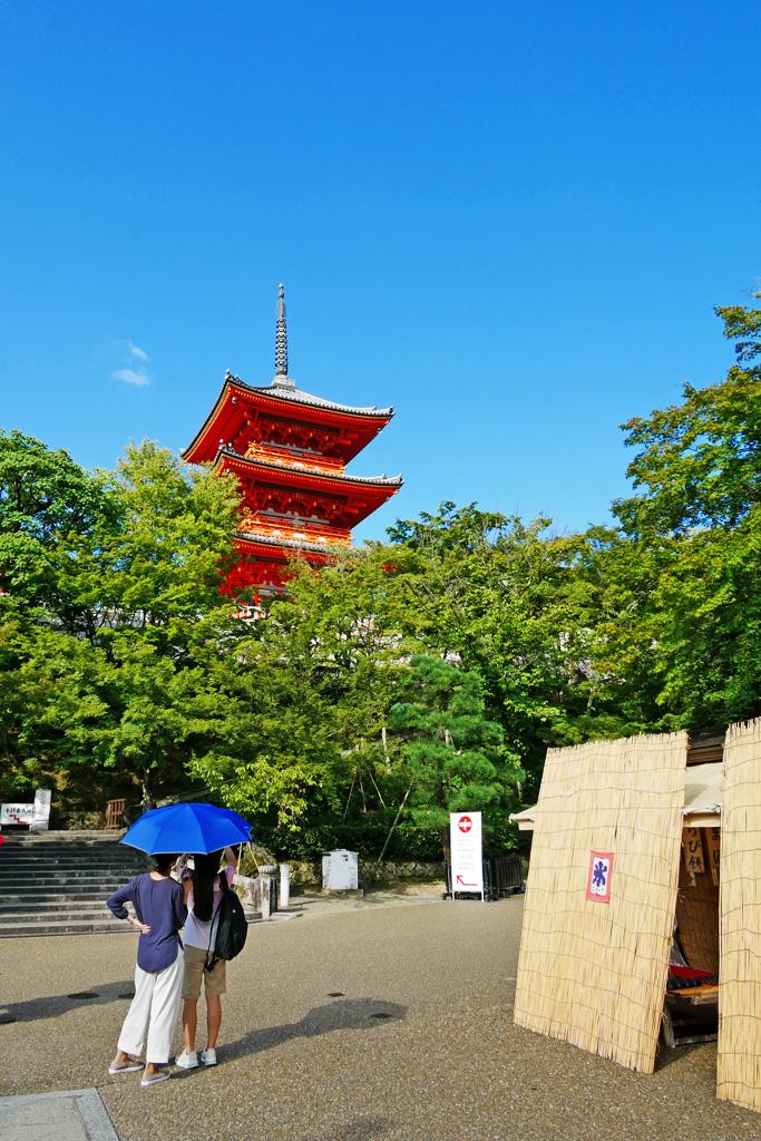 f:id:soutokuaoyama:20200626160435p:plain