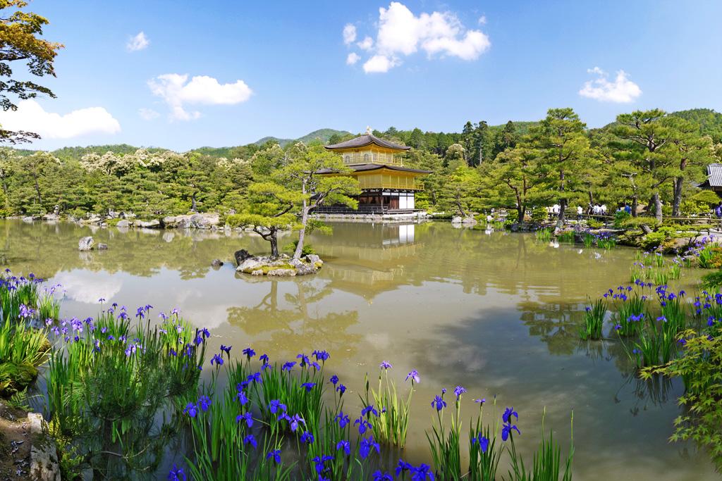 f:id:soutokuaoyama:20200626163304p:plain
