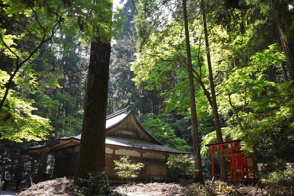 f:id:soutokuaoyama:20200629151239p:plain