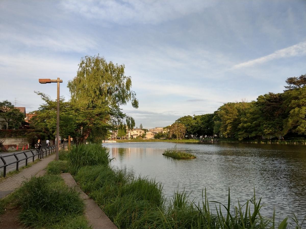 石神井公園風景