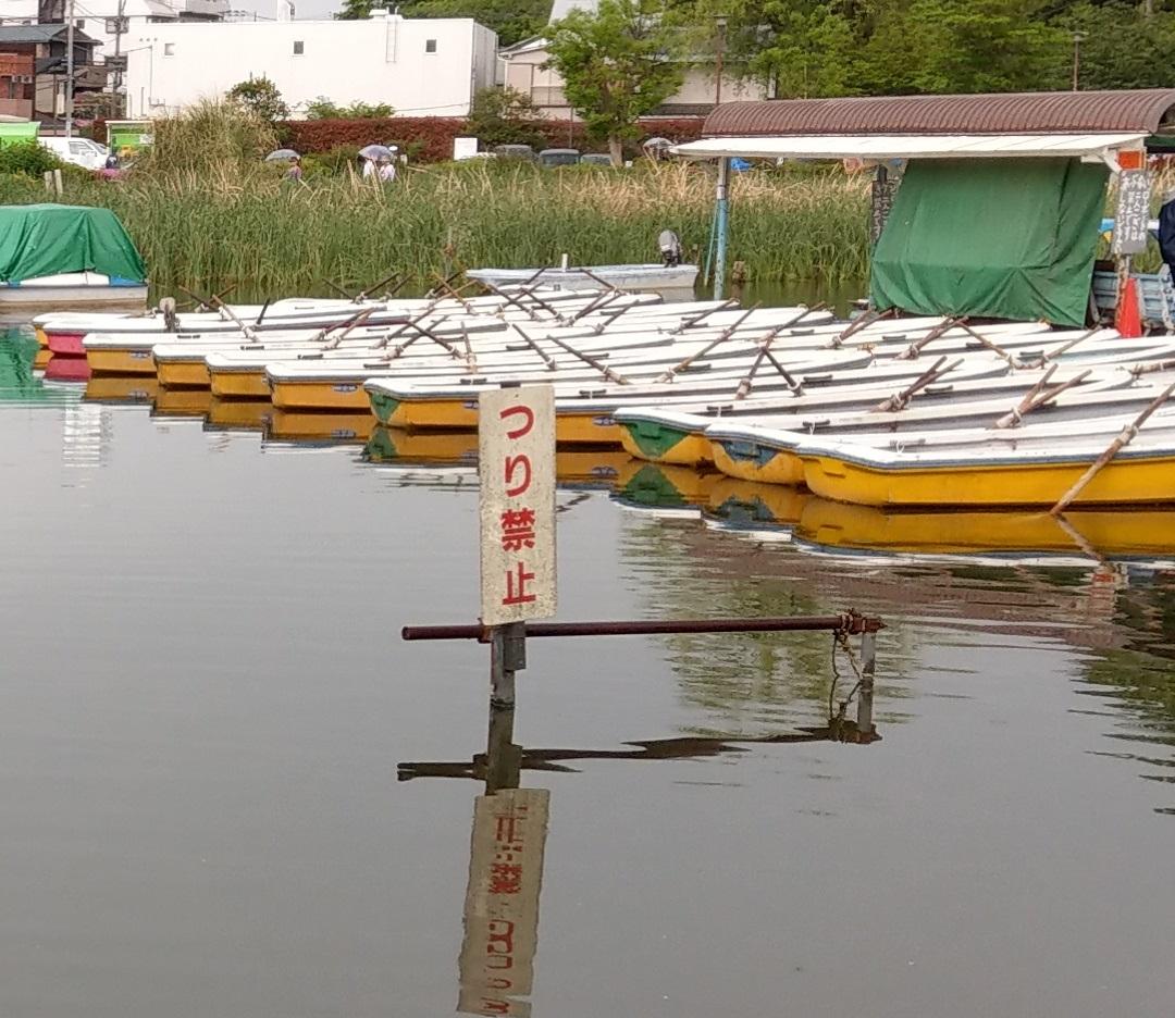 石神井公園釣り禁止立て看板