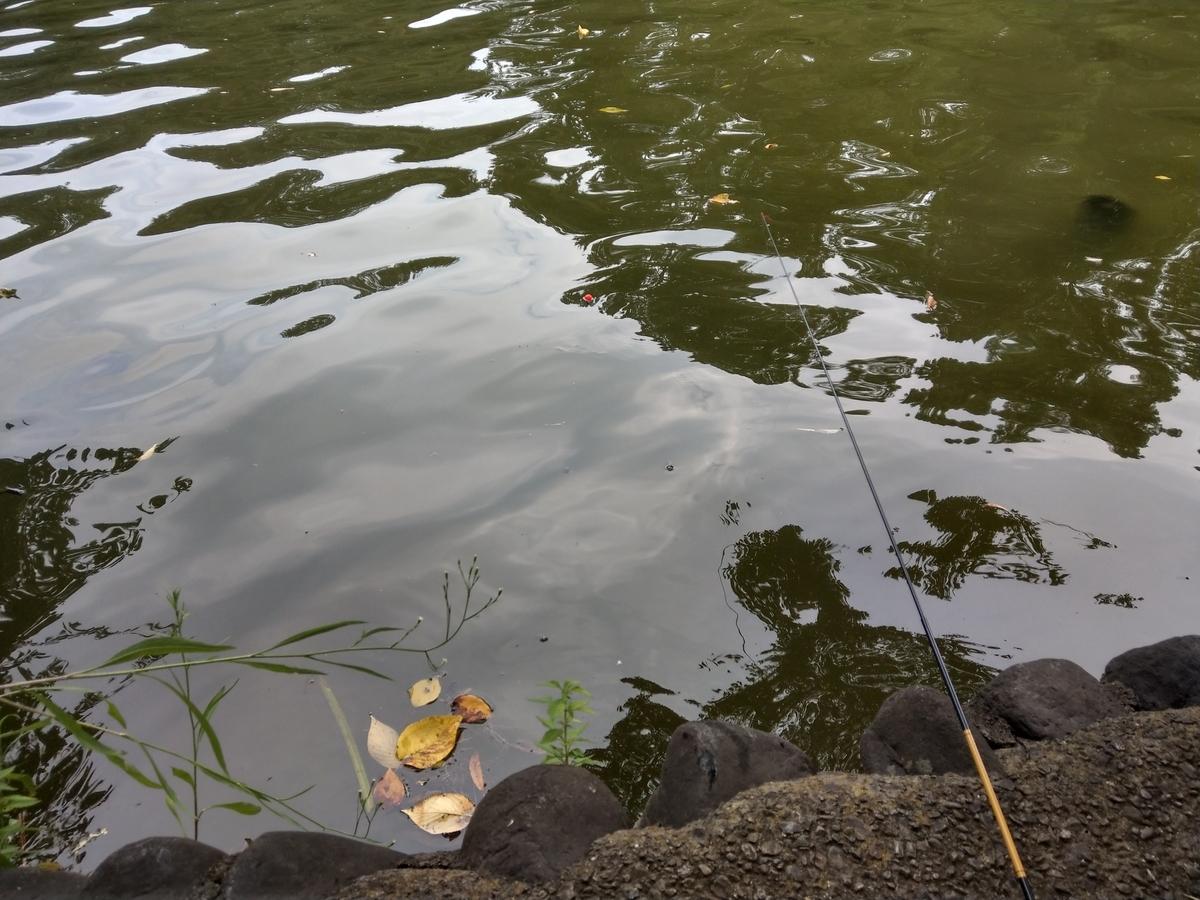 2019/08/18の水面