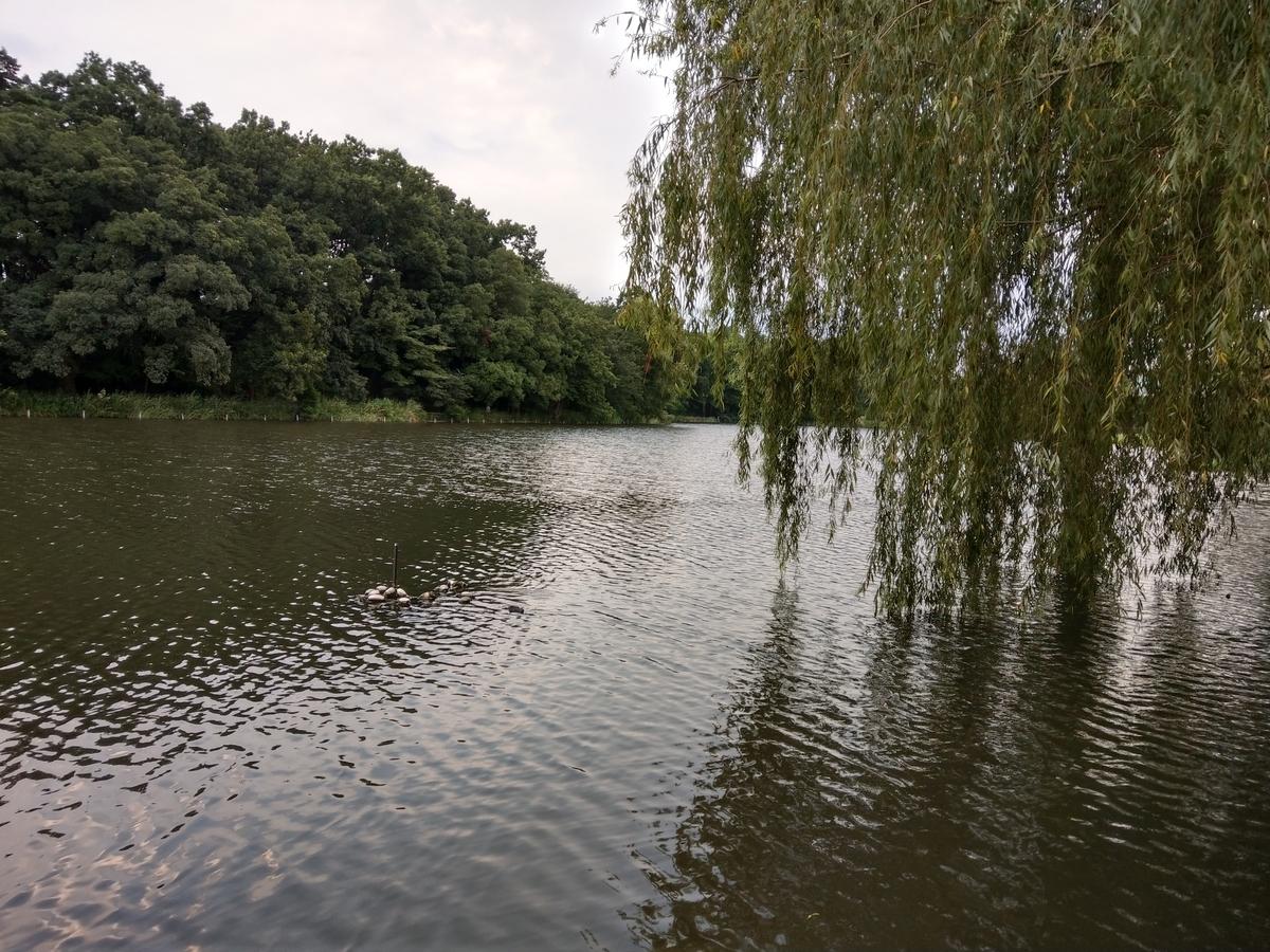 2019/08/18風景