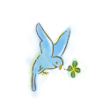 f:id:sowaka06:20201126010254p:plain