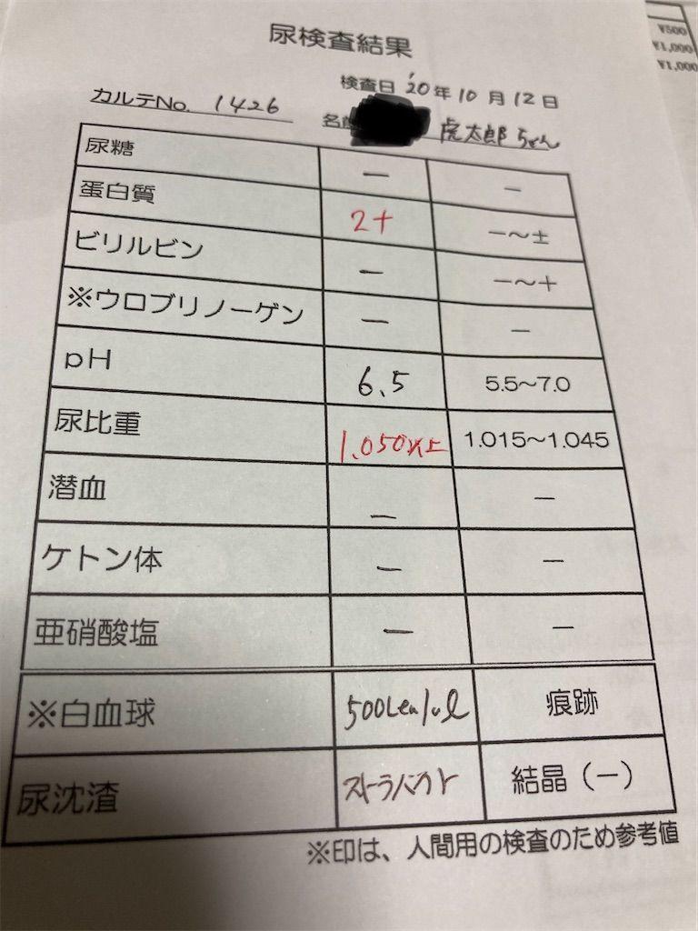 f:id:soyoukoto:20201012214118j:image