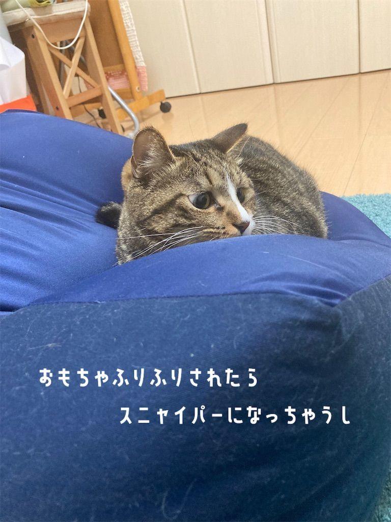 f:id:soyoukoto:20210916195653j:image