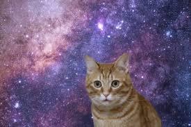 f:id:spaceemperor:20201126195209j:plain