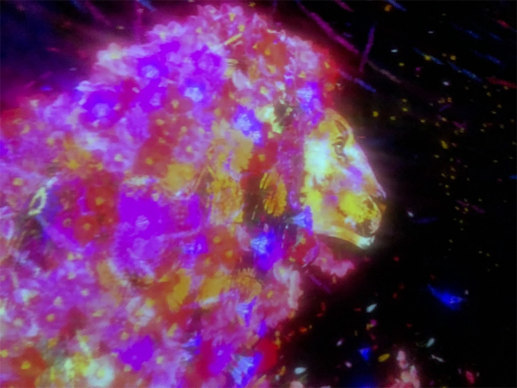 f:id:spaceopera13seed:20181210235146j:image