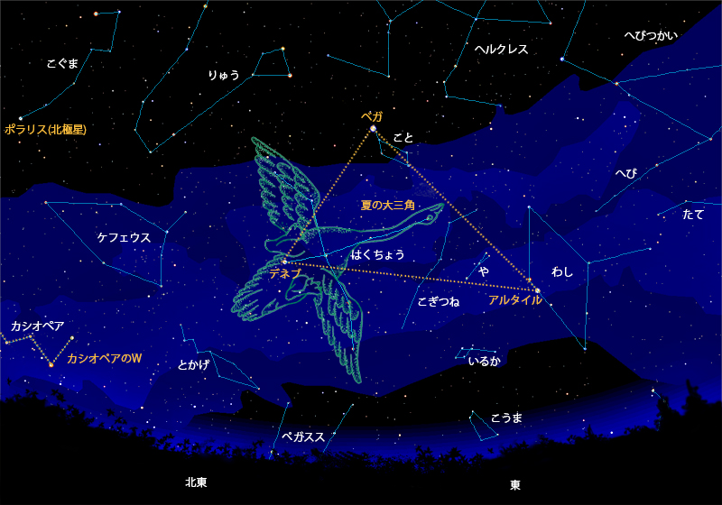 f:id:spaceopera13seed:20190617223728j:plain