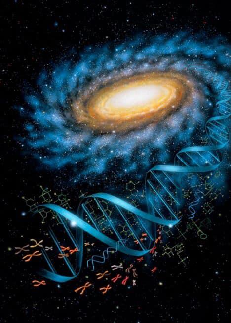 f:id:spaceopera13seed:20200312212130j:plain
