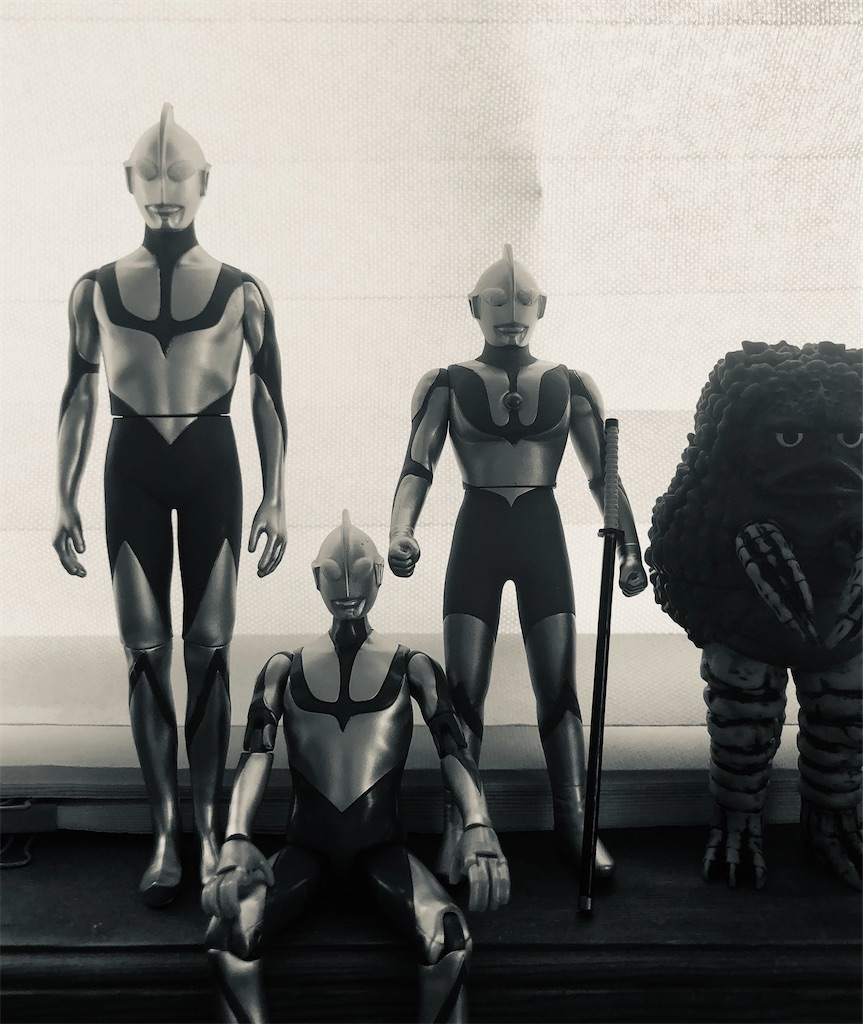 f:id:spaceopera13seed:20210303234745j:image