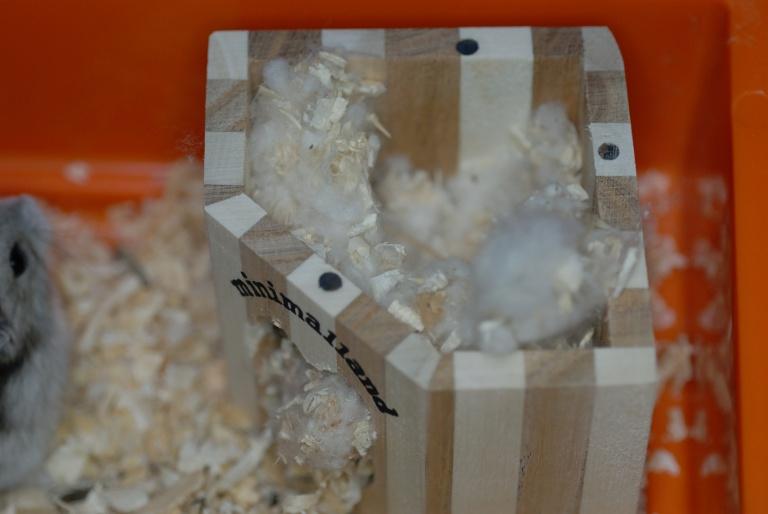 f:id:spanglemaker:20111112115219j:image