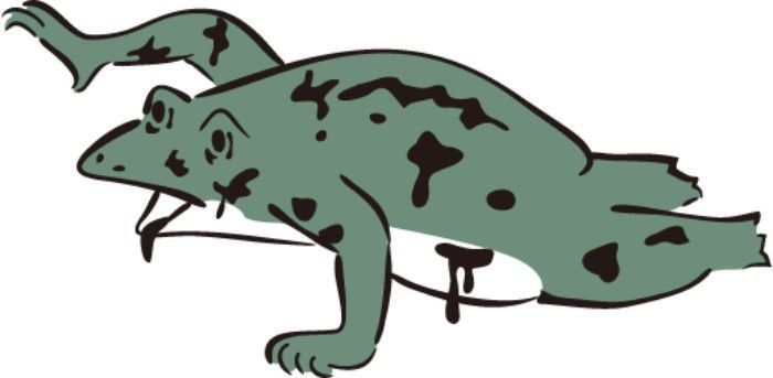 ゾンビ カエル