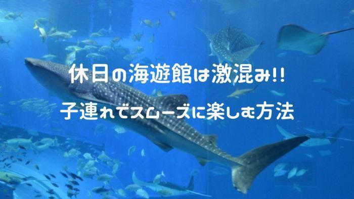 大阪 海遊館