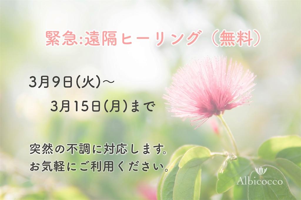 f:id:spipet:20210309172435j:plain