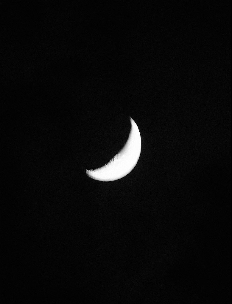 f:id:spiralout:20200428223704j:image