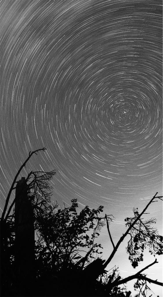 f:id:spiralout:20201122141757j:image