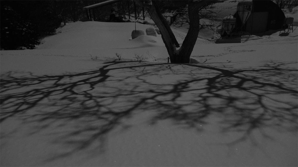 f:id:spiralout:20210228224708j:image