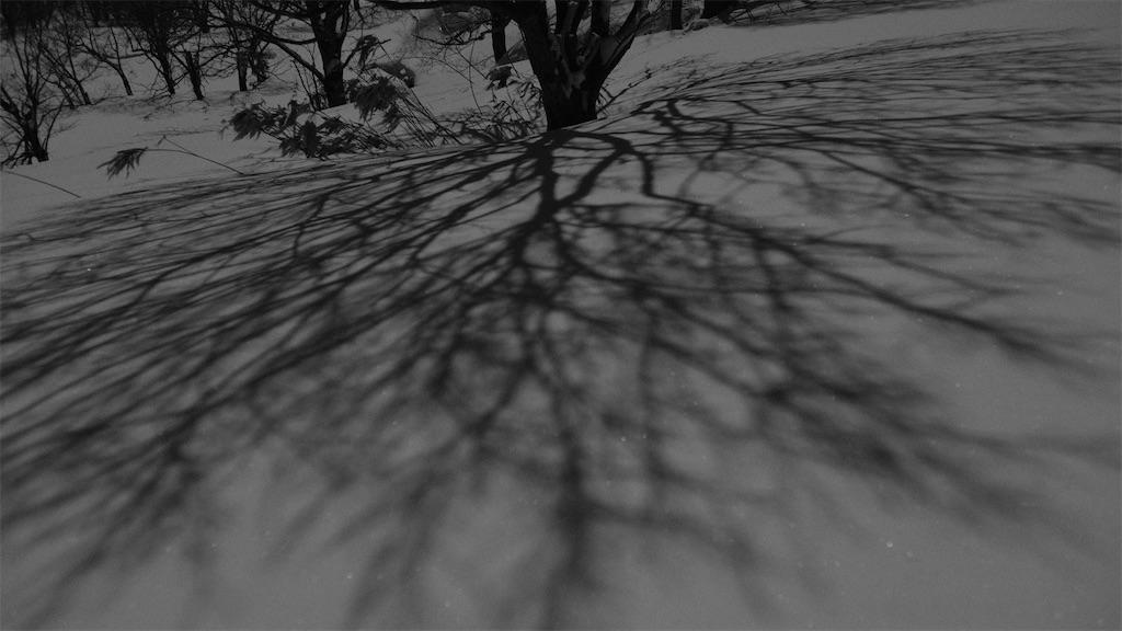 f:id:spiralout:20210228224725j:image