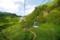 白根火山ロープウェイ、4番支柱付近。(2008年8月29日)