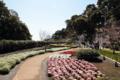 [きまぐれ×フォト]春を彩る遊歩道。(2010年3月30日、江ノ島にて)