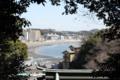 [きまぐれ×フォト]木々の間から東浜を鳥瞰。(2010年3月30日、江ノ島にて)